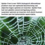 Spinnenvrij_Spinnenschoonmaak_Zaandam_Schoonmaak-03
